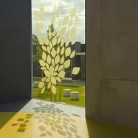 ガラスステッカー コレオ(黄色)